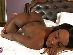 Vixxen Jasel is a horny tgirl with a sexy slim body, beautiful breasts and a great bubble butt! Watch this sexy black tgirl vixxen jacking off and cumming!
